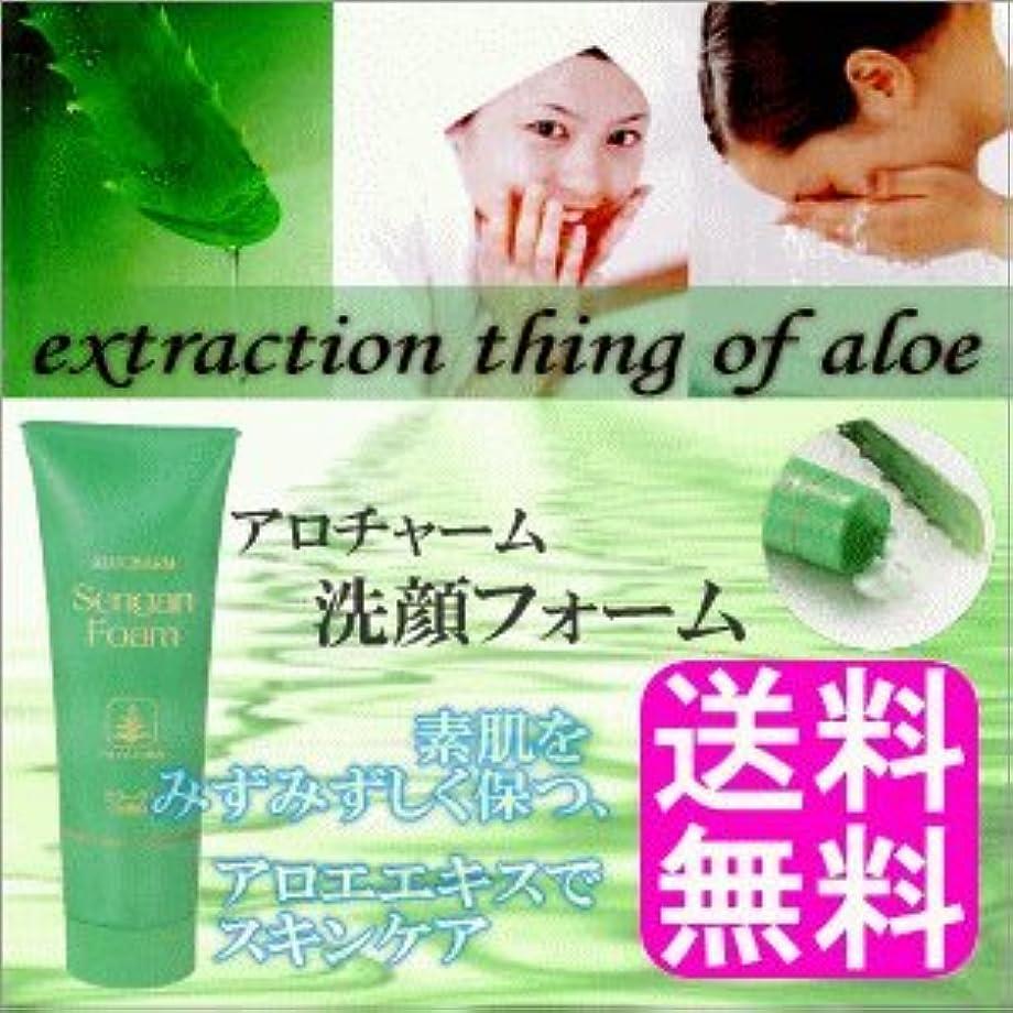 サワー大胆なシンポジウムアロチャーム 洗顔フォーム