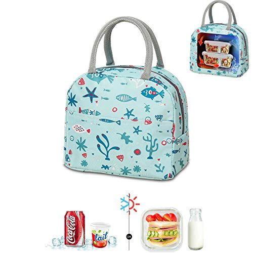 Bolsa térmica plegable, bolsa de picnic, bolsa de compras plegable, bolsa de picnic, bolsa de picnic, bolsa de almuerzo para hombres, bolsa de almuerzo (YLZ-lansehaiyang)