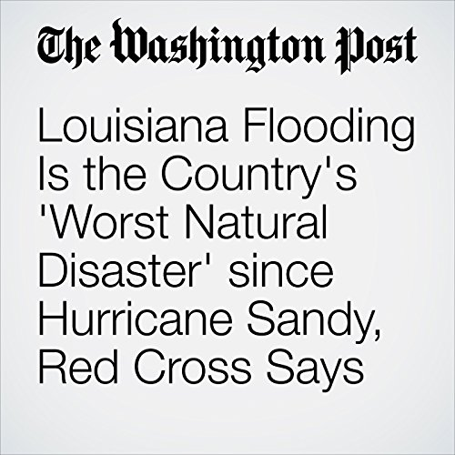 Louisiana Flooding Is the Country's 'Worst Natural Disaster' since Hurricane Sandy, Red Cross Says audiobook cover art