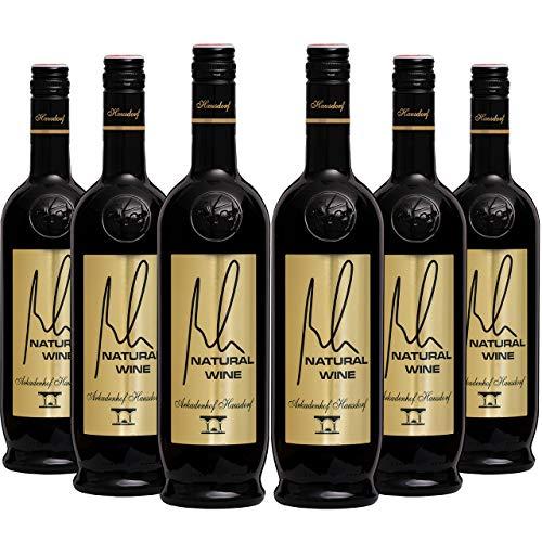 Bio Natural Wine 2015 (6x 0.75l) | Grüner Veltliner | Weißwein | Bioweingut Arkadenhof Hausdorf | Österreichischer Wein Trocken | Wagram | hefetrüb bio vegan Weinbau im Einklang mit der Natur