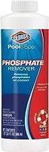 CLOROX Pool&Spa Phosphate Remover, 1-Quart 55032CLX