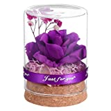 Cabilock Morado para siempre, flores auténticas eternas conservadas, arreglo floral para novia, esposa, madre, mujer, día de San Valentín, cumpleaños, boda