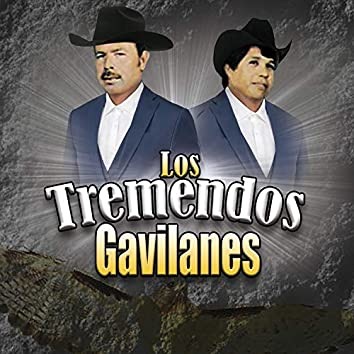 Los Tremendos Gavilanes