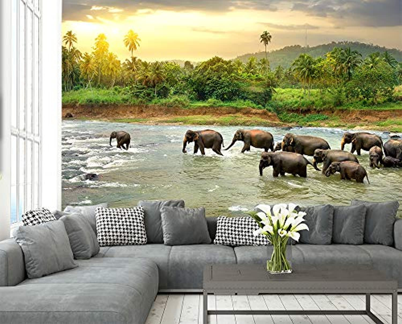 Fototapete selbstklebend Elefanten im Fluss - 310x200 cm - Wandtapete – Poster – Dekoration – Wandbild – Wandposter - Bild – Wandbilder - Wanddeko