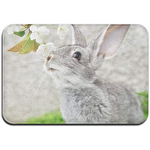 Grijze konijn buitenmat voordeur matten ingang tapijt standaard tapijt