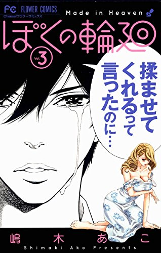 ぼくの輪廻(3) (フラワーコミックス)