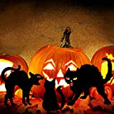 YEAHOME Metal Cat Decorative Garden Stakes, Black Cat Silhouette Stake Scary Halloween Decorations Outdoor for Yards, Gardens - Set of 3 Metal Animal Lawn Decoration, Cat Toys Gifts for Cat Lovers