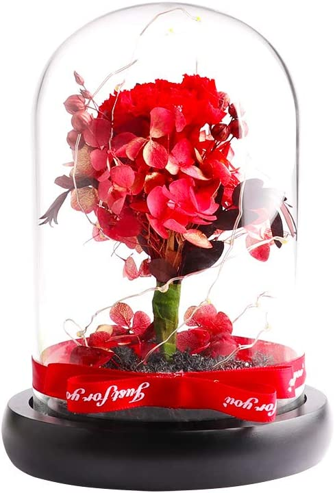 Preserved Flowers - COOAK Handmade Upscale OFFer Super sale period limited Carnation