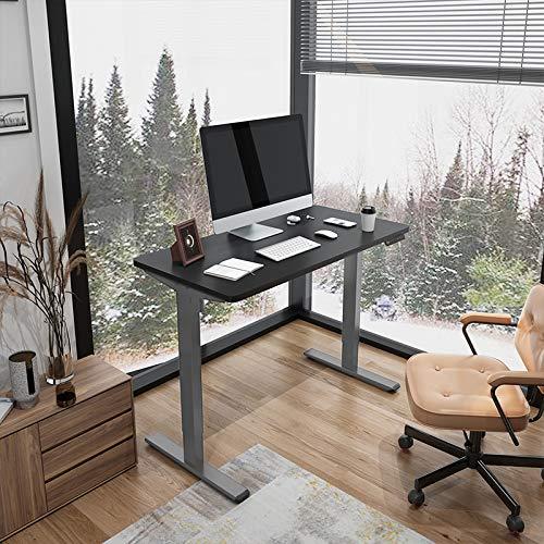 Flexispot E1 Elektrisch Höhenverstellbarer Schreibtisch mit Tischplatte 2-Fach-Teleskop, mit Memory-Steuerung (120 x 60 cm, Grau+Schwarz)