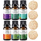 Essential Oils Set - Top 6 Essential Oils for Diffusers for Home, Aromatherapy - Tea Tree, Rosemary, Lavender, Peppermint, Orange, Eucalyptus, 4 Rotang Balls