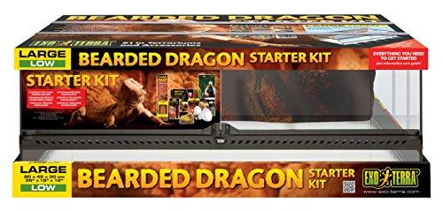 Exo Terra Bartagamen Starter Kit