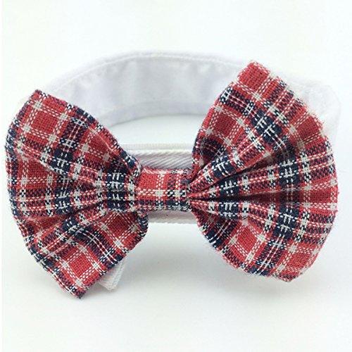 Ancdream Adorable Dog Cat Pet Chiot Kitten Toy Bow Tie Cravate Collier Vêtements