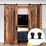 LWZH 9FT Double Sliding Barn Door Hardware Kit Sliding Interior Closet Door Track Set(Black T-Shaped Hangers)