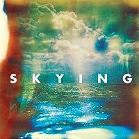 Skying [12 inch Analog]