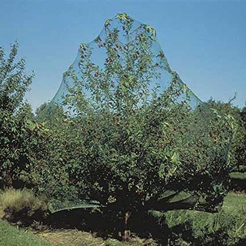 Filet anti-oiseaux vert 7,5 gr/m² 10x4 m