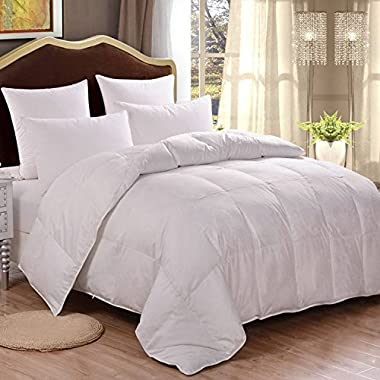 HOMFY Premium Cotton Comforter Queen,Quilted Comforter with Corner Tabs, Hypoallergenic, Soft and Breathable (White, Queen)