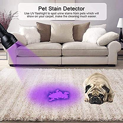 Pet Urine Detector Light Handheld UV Black Light Flashlight Portable Dog Cat Urine Carpet Detector Super Bright 51 LED UV Light for Pet Stain, Minerals, Automotive Leak Detection or Scorpion Hunting 5