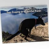 Dogs Pooping in Beautiful Places 2021 Calendar Funny Prank Christmas Holiday Gag Gift