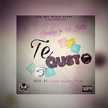 Te Gusto (feat. la Jotta)