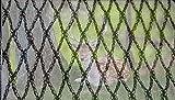 CHUTD Filet Anti-Cerfs Anti-Oiseaux avec Attaches zippées, clôture de Protection de Jard...