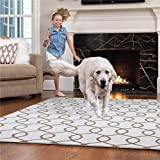 GORILLA GRIP Original Faux-Chinchilla Area Rug, 4x6 FT, Many Colors, Soft Cozy High Pile Washable, Modern Rugs, Luxury Shag Carpets for Home, Nursery, Bed and Living Room, Chevron Light Gray and White
