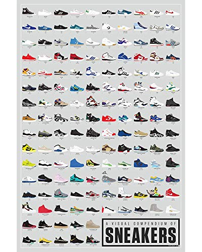 Pop Chart: Poster Prints (16x20) - Sneakers Infographic - Printed on Archival Stock - Features Fun Facts About Your Favorite Things