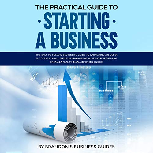 The Practical Guide to Starting a Business  By  cover art