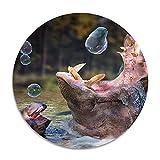 Tiere Baden Hippo Blasen Seife Anti-Rutsch-Korallensamt Runde Teppiche Memory Foam Bodenteppiche...