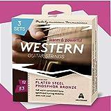 ▶ AMAZOUND® PROFESSIONAL Gitarrensaiten Westerngitarre ♫ Extra Volumen & Power