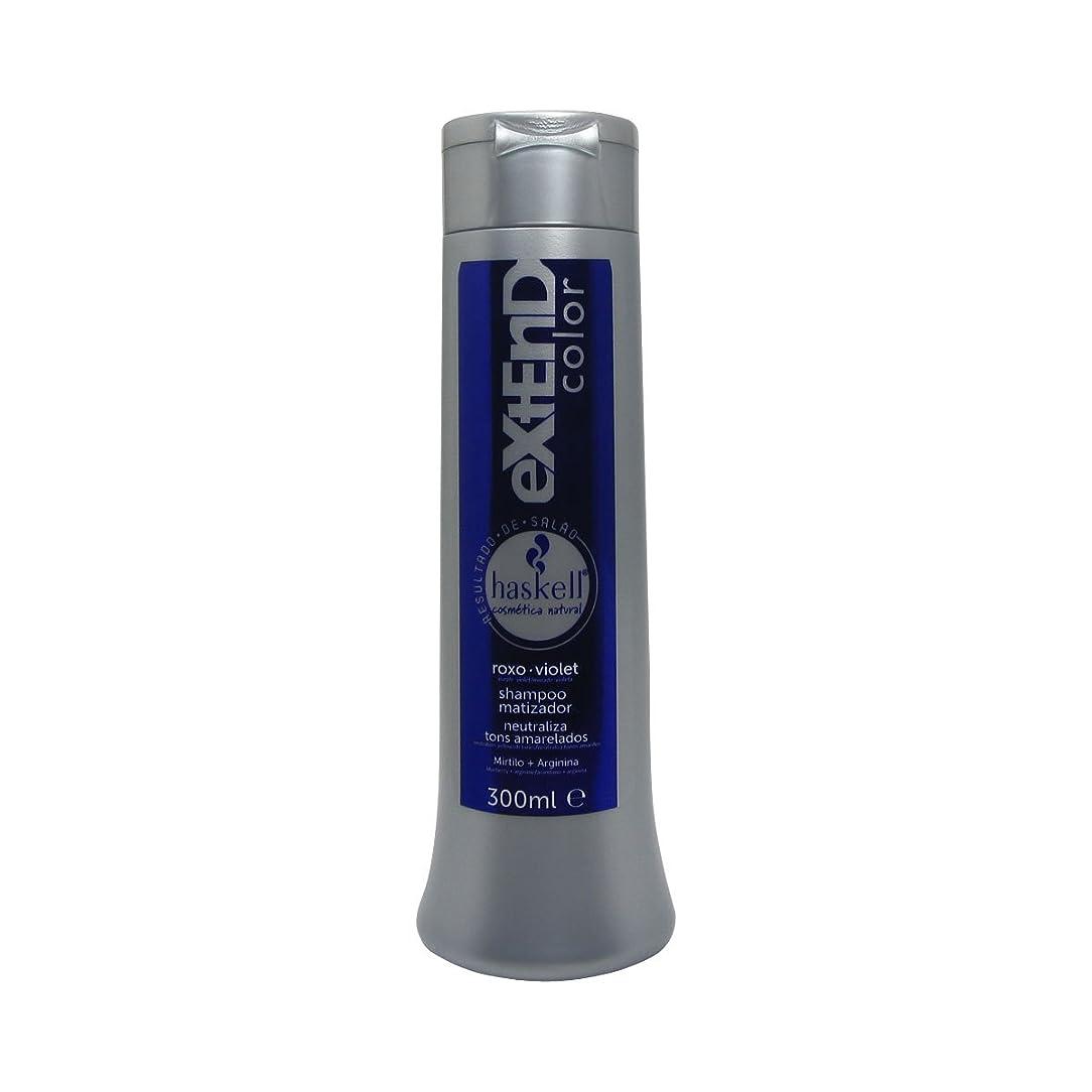 衰える食欲カウンターパートHaskell Extend Color Shampoo Purple/Violet Tint 300 Ml [並行輸入品]