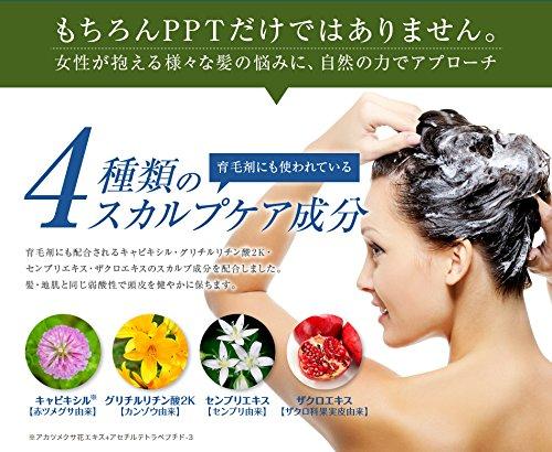 PPTコラーゲン&シルクシャンプー400ml脂性肌~普通肌用(ふんわり)