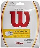 Wilson Poly Pro 15 Set Cordaje para Raquetas, Unisex Adulto, Plata, 15G