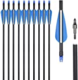 UMULIN Fiberglass Archery Target Hunting Practice Arrows 30Inch for Shooting with Recurve Compound Bows (Pack of 12) (32inch)