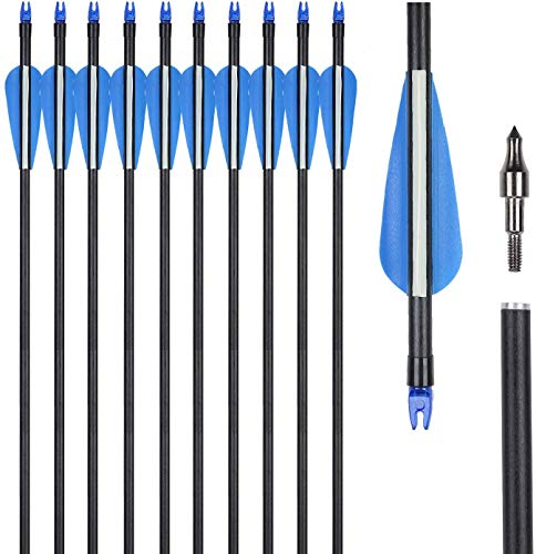 UMULIN Fiberglass Archery Target Hunting Practice Arrows 30Inch for Shooting with Recurve Compound Bows (Pack of 12) (30inch)