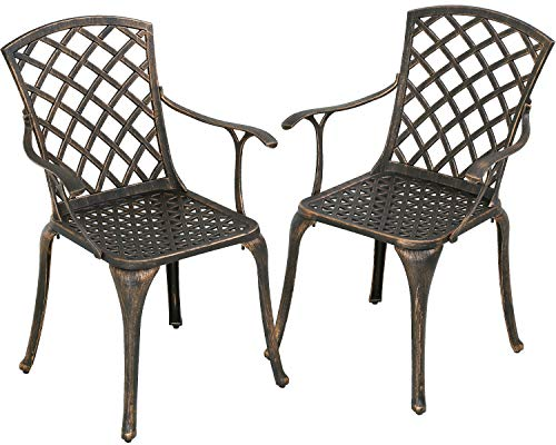 Patio Chairs Dining Chairs Set of 2 Outdoor Chair Wrought Iron Patio Furniture Patio Furniture Chat Set Weather Resistant