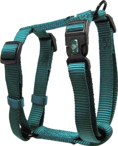 Dog H Harness