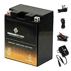 commercial YB14A-A2 ATV Battery with 0.5 A Charger – High Performance – Maintenance Free – Sealed SLA General Assembly… exide battery chargers