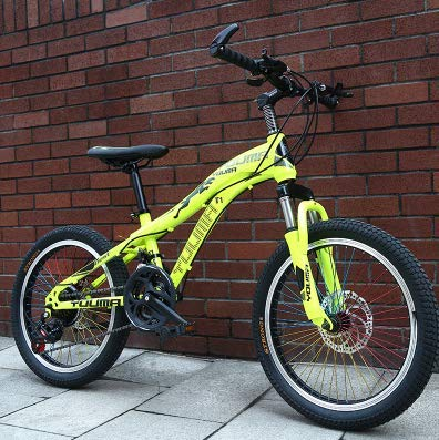 New Brand Mountain Bike Carbon Steel 21 Speed 24 inch Wheels Children Ladies Student Bicycle Outdoor Sports disc Brake BMX Bicicleta,Green