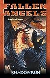 Stephen Kenson: Shadowrun - Fallen Angels