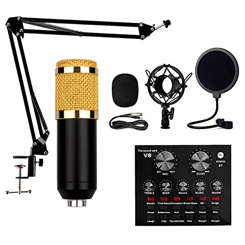 Microfono Audio, Set Microfono A Condensatore, Scheda Audio Live E Registrazione, Set di Microfoni per Telefoni Cellulari, Computer, Tablet, Notebook