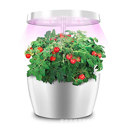 FDYD Hydroponique Indoor Herb Garden Kit - Multispectre LED Lampe de Bureau Growing