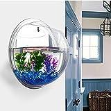 Sotoboo, acquario da parete, utilizzabile comefioriera o acquario per piante e pesci, in acrilico, decorazione per casa o ufficio, colore trasparente, Trasparente, 29.5cm