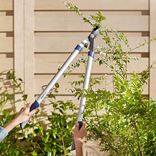 AmazonBasics Garden Tool Collection - Bypass Lopper, Tree Trimmer, with Carbon Steel Non-Stick Coating Blade, Aluminum Tube Handle with Comfort Grips 28''