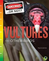 Vultures and Other Birds (Dangerous... or Not?)