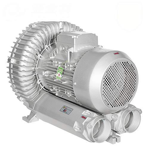 LAY 220 V Ventilateur À Haute Pression, Ventilateur Bain Tourbillon Ventilateur Pompe De Whirlpool Pompe Secteur De L'énergie De L'aquaculture avec Aérateur Étang