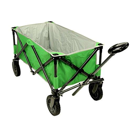 Fridani Carro de playa BTG XL, 75 kg, ruedas estables, asa y estante, color verde
