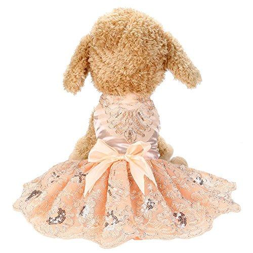 Doublehero Hundebekleidung,Hund Katze Puppy Prinzessin Kleidung Modischer Pailletten Spitze bestickt Hund Kleid Prinzessin Hochzeit Kleider Kostüme Kleidung Kleidung (XL, Rosa)