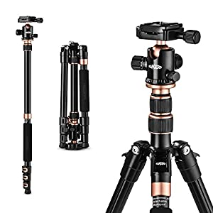 """Camera Tripod, TYCKA 55"""" Lightweight Aluminum Portable Travel Tripod with 1/4"""" Quick Release Plate, 360°Panorama Ball Head and Carrying Bag"""