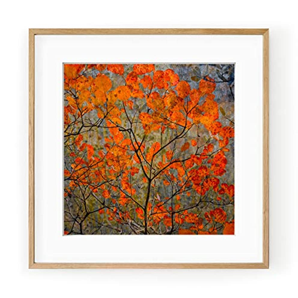 Rousses Leaves, White Varnished Wood Frame, with Mount, Multicolored, 40x40