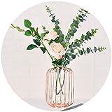 VNEIRW 3D Vasen Deko Hydroponische Glasvase Reagenzglas Hängevase mit Geometrische Metallgestell, Vintage Blumen Pflanze Dekorationen für Tischdeko Wohnzimmer Büro Party Hochzeit (Roségold)